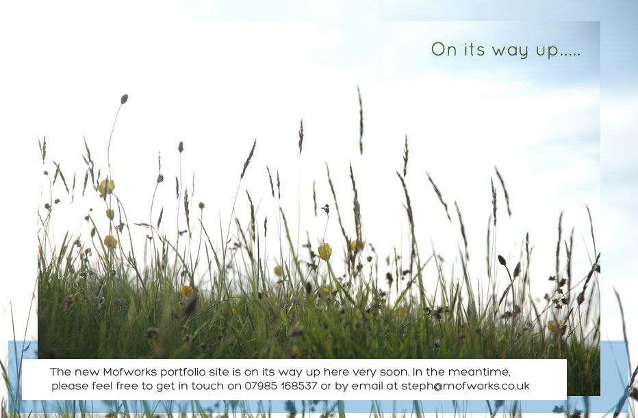 photo of grass and text saying on its way up. The new Mofworks portfolio site is on its way up here very soon. In the meantime, please click on the links below to see some examples of my recent work. Please feel free to contact me on 07985 168537 or by email at steph@mofworks.co.uk